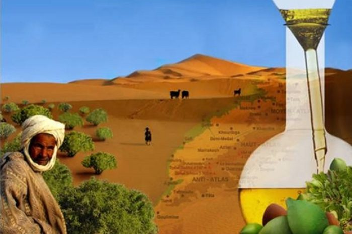MOROCCO ARGANE TOUR – 9 Days / 8 Nights